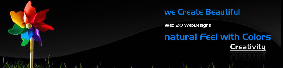 Flash Web Design Company- Chandigarh India